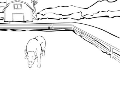 Branding Bull Animatic
